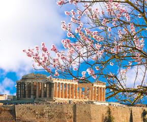 Fototapete - Parthenon spring season almond's flrowers Acropolis in Athens