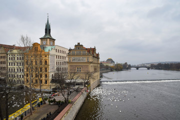 Autumn. The Vltava river in Prague. Swans.