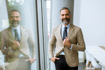 Portrait of senior businessman by the window