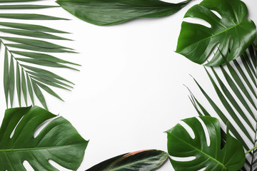 Flat lay composition with tropical leaves and space for text on white background