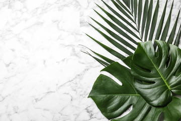 Flat lay composition with tropical leaves and space for text on marble background