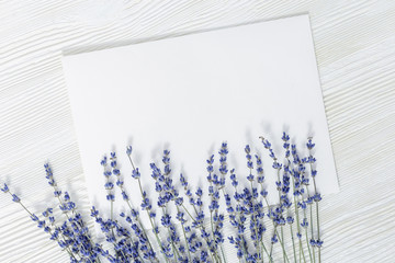 Mockup of picture frame decorated lavender flowers.