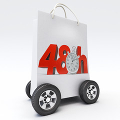 Purchase delivery in 48 hours