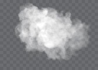 Garden Poster Smoke Transparent special effect stands out with fog or smoke. White cloud vector, fog or smog.