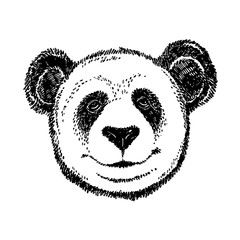 Hand drawn panda. Graphic illustration isolated on white. Panda Logo Design Inspiration.