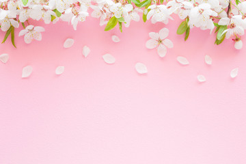 Fresh branches of cherry white blossoms on pastel pink background. Mockup for special offers as advertising or other ideas. Empty place for inspirational, motivational text, quote or sayings.