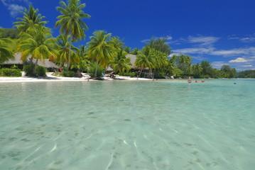 lagon de moorea polynesie
