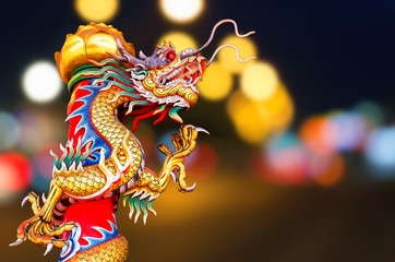 Chinese Golden Dragon on the  background.
