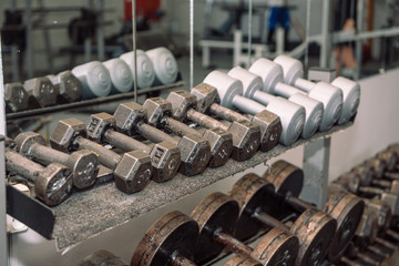 Deurstickers Fitness Gym equipment. Weights, dumbbells. Gym. Weightlifting. Inventory in the hall.