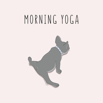 Vector pug in split morning yoga exersises. Cartoon character decoration. Doodle dog doing sport. Hand drawn kids nursery poster with typography text.