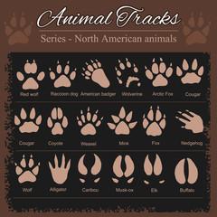 Animal Footprints - North American animals