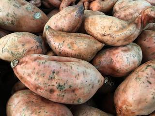 Kumara sweet potatoes root vegetables