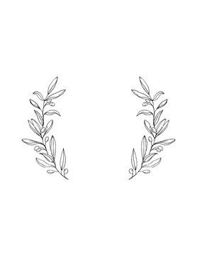 Delicate Hand Drawn Green Olive Twigs Isolated on a White Background. Vector Black Branch Frame. Retro Style Delicate Black Sketched Floral Wreath. Illustration Without Text.