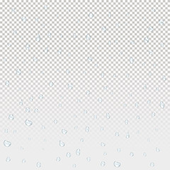 Water rain drops. Illustrations isolated on transparent background. Graphic concept for your design