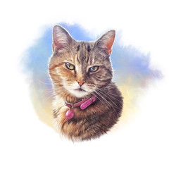 Cute striped cat. Watercolor portrait of a pet. Drawing of cat with a pink collar executed in watercolor. Good for print on pillow, T-shirt. Art background for pet shop. Hand painted illustration