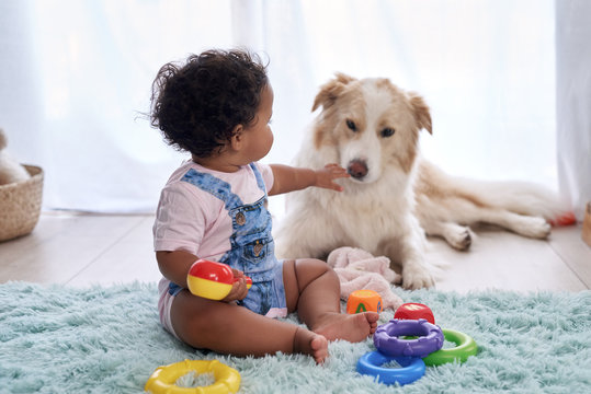 Baby with family dog on the floor