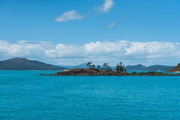 Mini-Insel mit Bäumen im Meer mit bewölktem Himmel