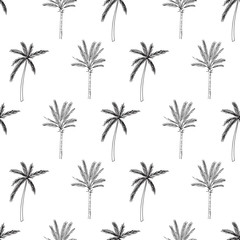 Hand-drawn seamless pattern with palm trees, isolated on white background. Abstract summer illustration.