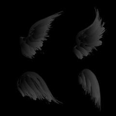 Black gradient wings