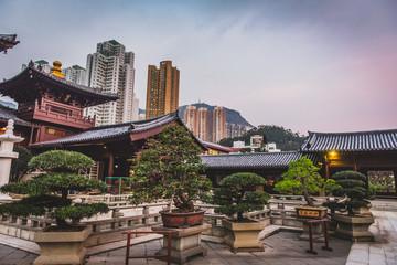 Wall Mural - Honk Kong, November 2018 - Nan Lian Garden park