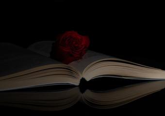 Book. Rose. Opened. Side. Light. Reflection. Black