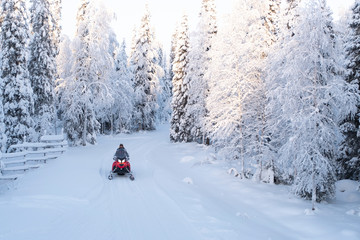 Snowmobile trip.   Rest in Finnish Lapland.