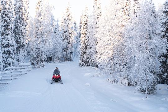 Snowmobile trip.   Rest in Finnish Lapland.
