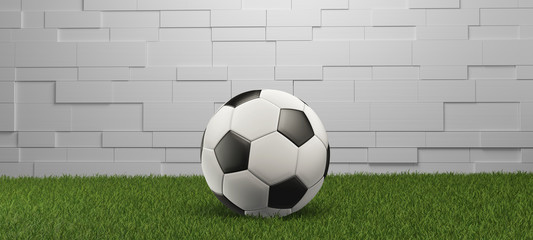 Soccer ball on grass wall panorama white background 3d-illustration