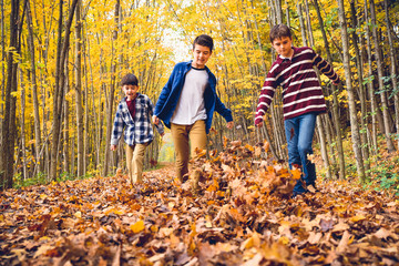 Brothers playing with dry leaves on footpath in forest during autumn