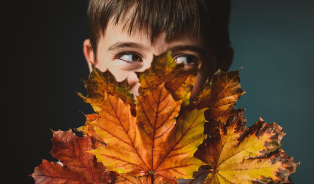 Close-up of boy looking away while covering face with autumn leaves against colored background