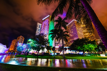 Palms and colorful skyscrapers in downtown Miami at night Fototapete