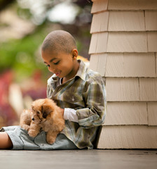 Happy young boy sitting with a puppy on his lap.