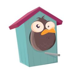 funny cartoon bird in a bird box