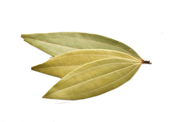 Dired bay leaves isolated on white background