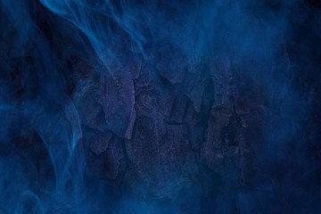 blue mist covered tree trunk close up mystical patterns