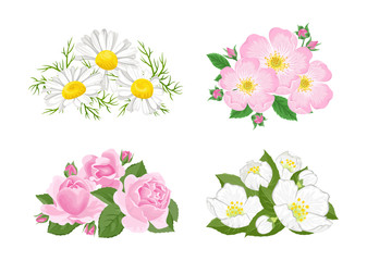 Flowers set. Bouquet of сhamomile, wild rose, dogrose, jasmine isolated on white background. Vector floral illustration in cartoon simple flat style.