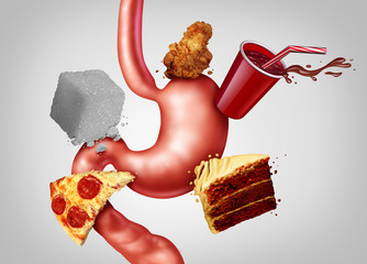 Digestive health And Junk Food