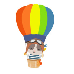 Cartoon animal fly in hot air balloon. Image for children clothes, postcards.