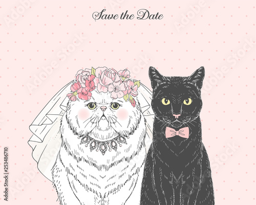 f9601213a0a7 White persian cat bride in wedding veil and floral diadem and black cat  groom in bow tie. Vector hand drawn animal illustration for save the date  wedding ...