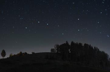 Serene starry night Wall mural