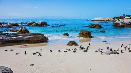 The Atlantic coast of Africa