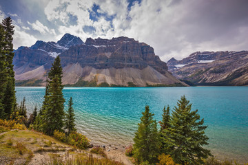 Bow Lake, surrounded by pine trees