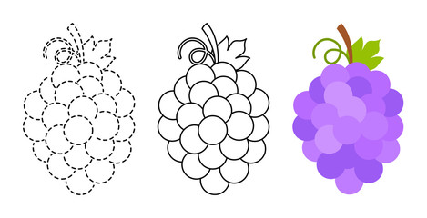 Grape to be colored and trace line educational game for kids