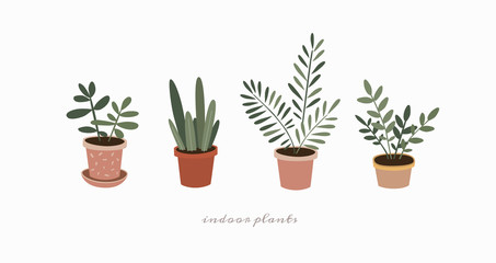 Set of indoor plants in flower pots. Home green plants of various shapes. Scandinavian style illustration, home decor. Vector illustration on white isolated background.
