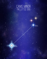 Canis minor the little dog constellation on a starry space background with the names of its main stars. Relative sizes and different color shades based on the spectral star type.