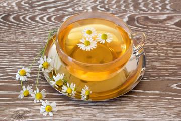herb tea with fresh chamomile