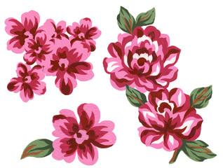 Watercolor elegant colorful vintage romantic rose bouquet flower element set elements on white background