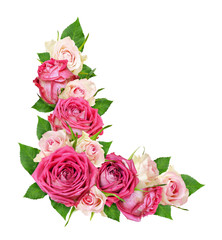 Beautiful pink and white rose flowers in a corner arrangement
