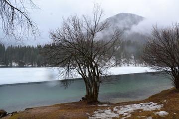 Landschaft Wasser Natur Wald