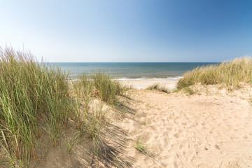 Blick aus den Dünen aufs Meer an der Nordseeküste aud Sylt